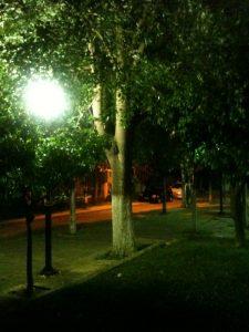 Βράδυ στην πλατεία Παπανικολάου